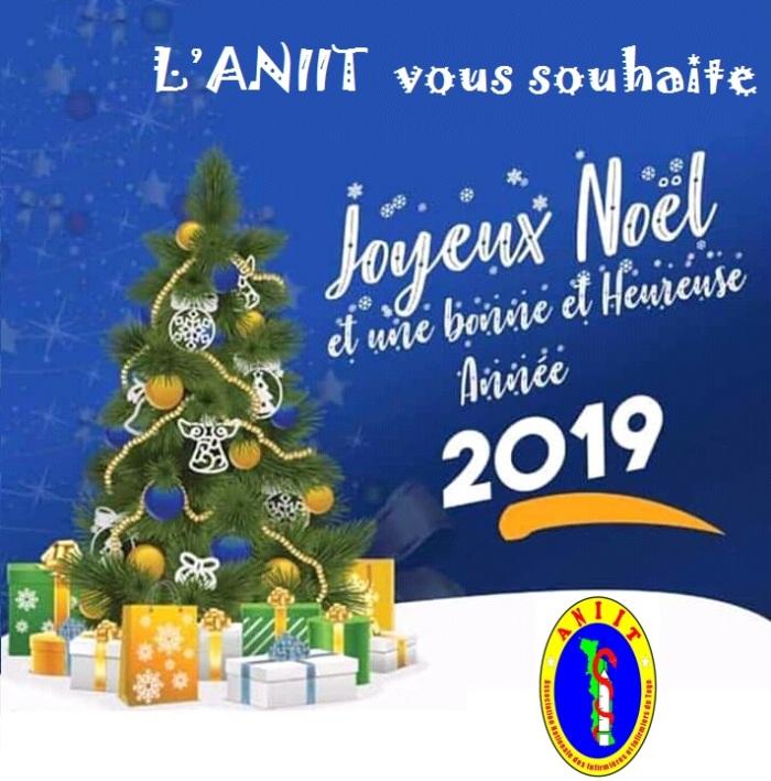 Voeux Noel et Nouvel an 2019